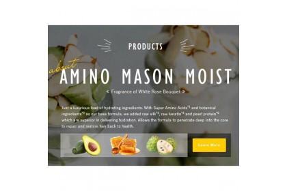 Amino Mason Moist Night Cream (120g)